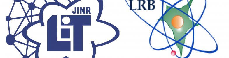 "Joint workshop of LIT and LRB ""Information system for the tasks of radiation biology"""